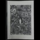 666 In The Northern Sky # 02 (Fanzine)