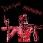 Ahorkado/Diorrhea - Split CD