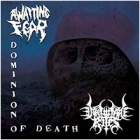 Awaiting Fear/Inhumane Rites - Dominion of Death