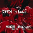 Brutal Noise/Morgue - Ripped in Half