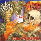 Cobra/Skull - Poison in the Bones
