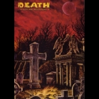 Various Artists - Death ...Is Just The Beginning V (DVD)