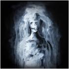 Depicting Abysm/Windbruch/Gmork - Silentium!