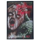 Disastrous Murmur - Rhapsodies in Red (Patch: Black Border)