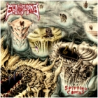 Ectoplasma - Spitting Coffins