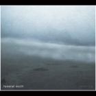 Funeral Moth - Dense Fog