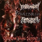 Infected Malignity/Malebolgia/Tragical Memories - Supreme Brutal Legions Vol.2