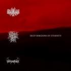 Lascowiec/Marblebog/Verzivatar - Deep Horizons of Eternity