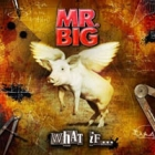 Mr. Big - What If... (CD+DVD)