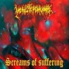 Vagina Stench Vomitive - Screams of Suffering