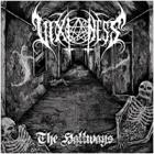 Vixioness - The Hallways
